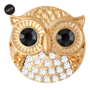 Yellow Gold Tone Yoo Whoo Owl Clear Snap #S1634 by Magnolia and Vine available at MyStyleInASnap.com